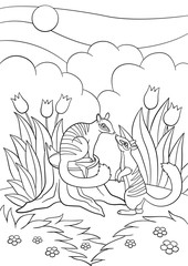 Coloring Pages. Two Little Cute Numbats Look At Each Other.