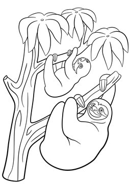 Coloring pages. Mother sloth with her little cute baby.