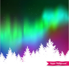 Northern lights and white spruce forest