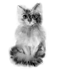 Watercolour gray fluffy cat portrait. Hand drawn illustration
