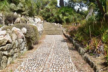 Bilder und videos suchen gartentreppe - Mediterraner steingarten ...