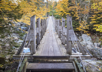 Wooden Suspension Bridge