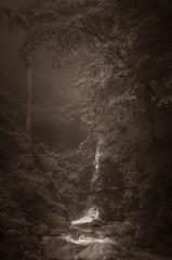 Cascade des Pyrénées sépia