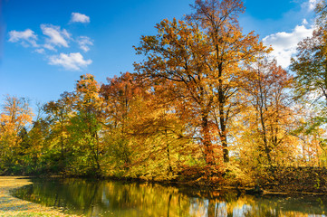 Landscape of golden autumn at lake in poland