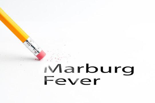 Closeup of pencil eraser and black Marburg Fever text. Marburg Fever. Pencil with eraser.