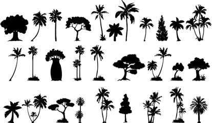 palm tree silhouette collection