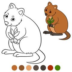 Color me: quokka. Little cute quokka with plant.