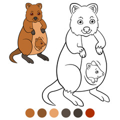 Color me: quokka. Mother quokka with her little cute baby.