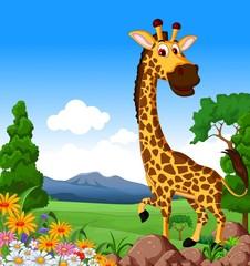 Cute giraffe cartoon in the jungle