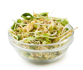 Mix of sprouted flax, peas, mung bean, sunflower, wheat, lentil seeds in glass bowl isolated on white background. vegan, raw food diet