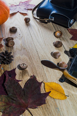 Yellow leaves and pumpkin on a wooden table