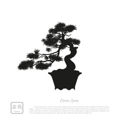Black silhouette of a bonsai on a white background. Detailed ima
