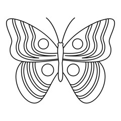 Light butterfly icon. Outline illustration of light butterfly vector icon for web