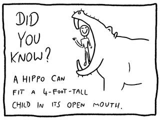 Animal fact - cartoon funny trivia fact