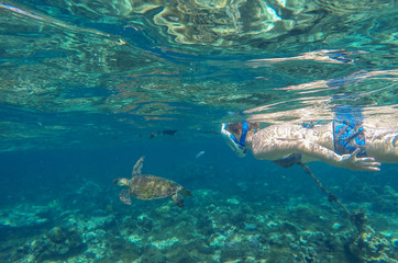 Sea turtle in blue water in coral reef with female snorkel, Philippines, Apo island.