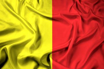 Waving Flag of Orleans, France