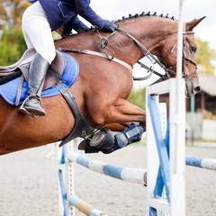 Young rider girl jumping over barier on her course