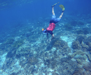 Snorkel in yellow fins swims underwater. Discovery of tropical nature