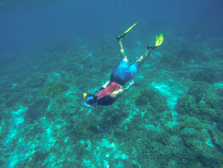 Snorkeling with sea turtle. Snorkel in yellow fins.