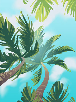 Summer vector poster with two palms