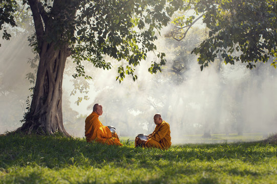 Two monks meditation under the trees with sun ray, Buddha religi
