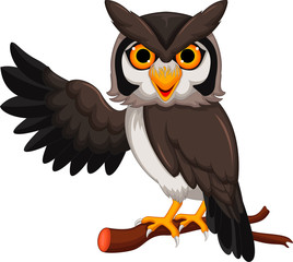 Cute owl cartoon posing