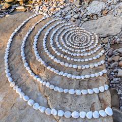 Circles on coast
