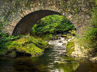 old stone bridge over stream in forest park,Northern Ireland