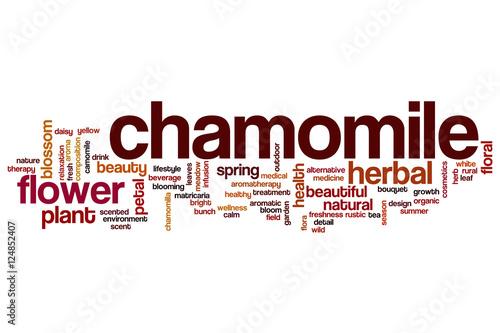 chamomile word cloud stockfotos und lizenzfreie bilder auf bild 124852407. Black Bedroom Furniture Sets. Home Design Ideas