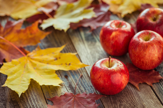 Red autumn apples with maple leaves on wooden table