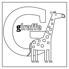 Coloring page or card for kids with English animals zoo alphabet. Giraffe, letter G vector illustration