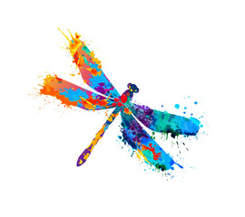 dragonfly of splash paint