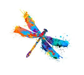 dragonfly of splash paint