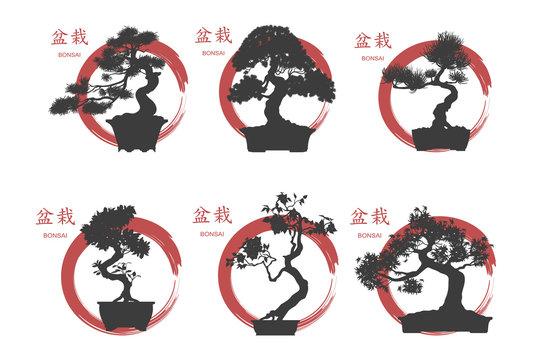 Bonsai set. Black silhouette of a bonsai on a white background.
