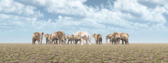 Weißer Elefant in einer Elefantenherde