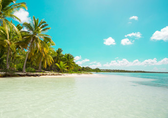 Saona Island, Punta Cana, Dominican Republic, green filter