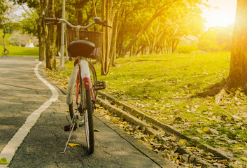 Close up photo of bicycle  at the summer  sunset on tiled road in the city park