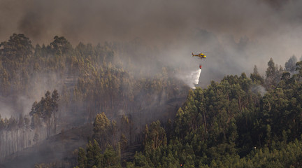 Portuguese CS-HMI Civil Protection Firefighter Helicopter Dropping Water on a Fire 1