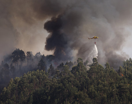 Civil Protection Firefighter CS-HMI Portuguese Helicopter Dropping Water