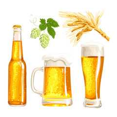 Set of cold beer bottle, mug and glass, malt and hop, vector illustrations isolated on white background. Hand drawn beer glass, mug and bottle, branch of hops and ears of barley, Oktoberfest