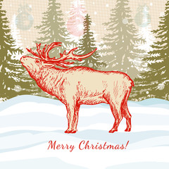 Merry Christmas card deer in winter forest