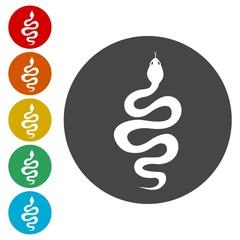 Snake icon set - vector