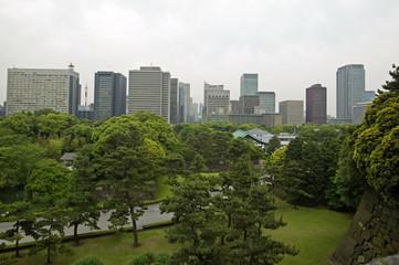 park n cityscape
