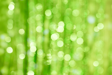 Green defocused background