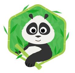 Panda Bear - Icon of a cute panda holding a bamboo. Eps10
