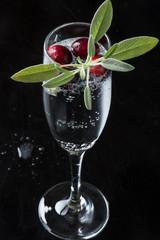 Cranberry Sage Beverage