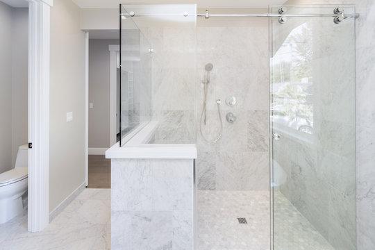 Glass Shower in modern home.