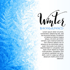Ice winter background