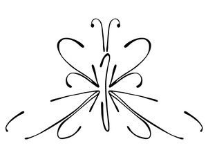 Vector black and white  illustration of insect. Butterfly isolated on the white background. Hand drawn contour lines and strokes. Decorative logo, icon, sign. Graphic vector illustration.