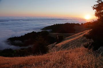 hills n fog